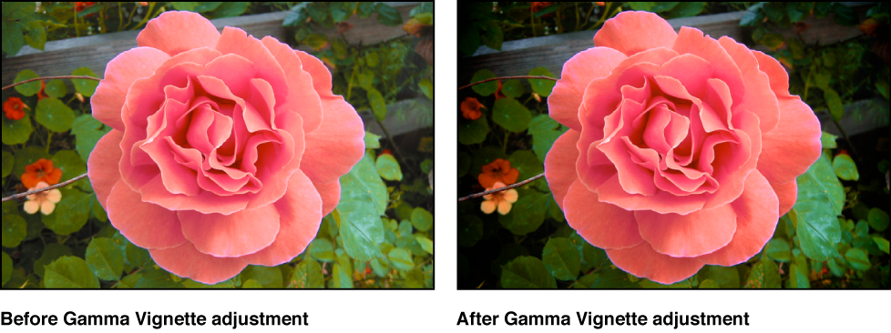 Figure. Image before and after a Gamma Vignette adjustment.