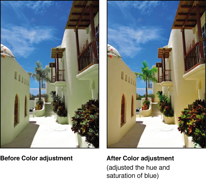 Figure. Image before and after a Color adjustment.