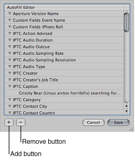Figure. AutoFill Editor.