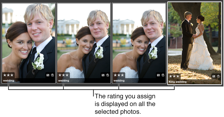Figure. Group of images with the same rating applied to each image.