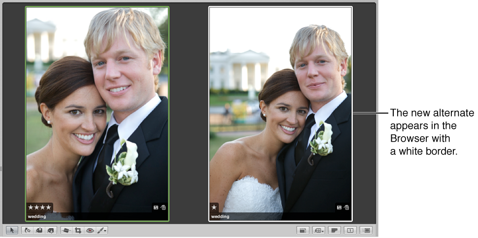 Figure. Viewer showing the compare image on the left and a new alternate on the right.