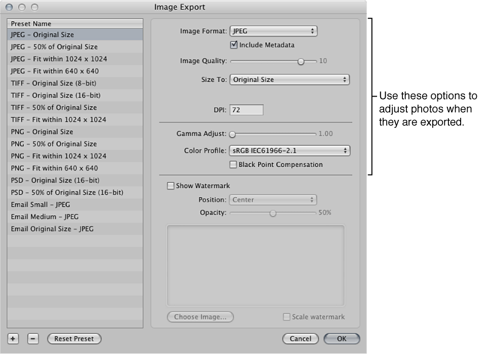 Figure. Image adjustment options in the Import Export dialog.