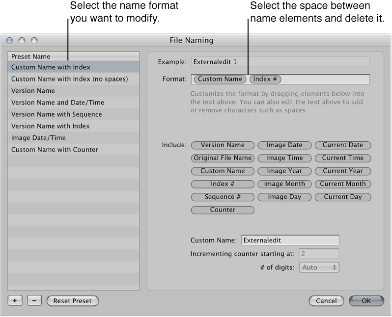 Figure. Name format preset and format element structure in the File Naming dialog.