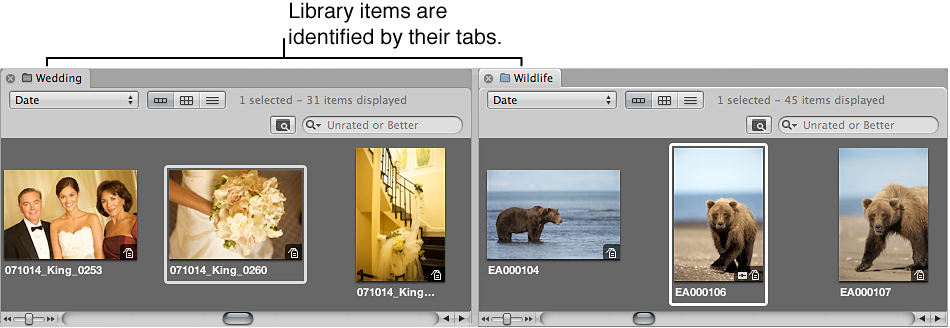 Figure. Browser showing two projects side by side in individual tabbed panes.