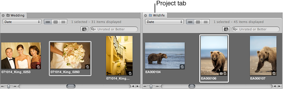 Figure. Browser split into panes containing the images of the two items selected in the Library inspector.