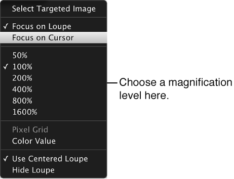 Figure. Loupe pop-up menu showing magnification options.