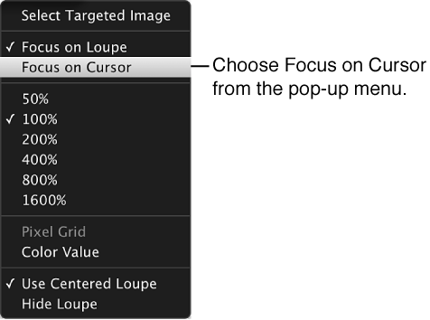 Figure. Loupe pop-up menu showing the Focus on Cursor command.