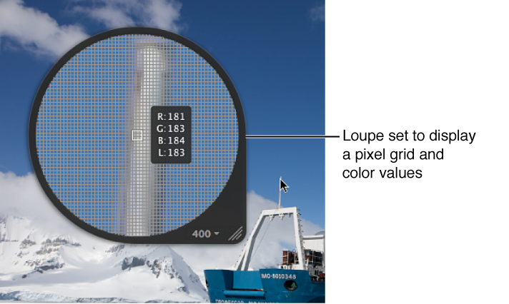 Figure. Centered Loupe set to display a pixel grid and color values.