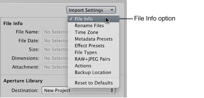 Figure. Import Settings pop-up menu in the Import browser.
