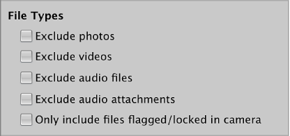Figure. Filter Files controls in the Import browser.