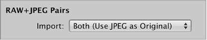 Figure. RAW + JPEG Pairs controls in the Import browser.