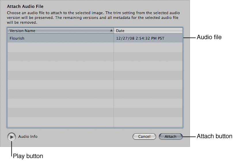 Figure. Controls in the Attach Audio File dialog.