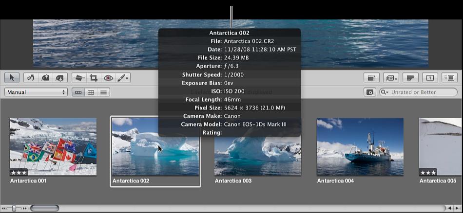 Figure. Metadata tooltip showing an image's metadata.