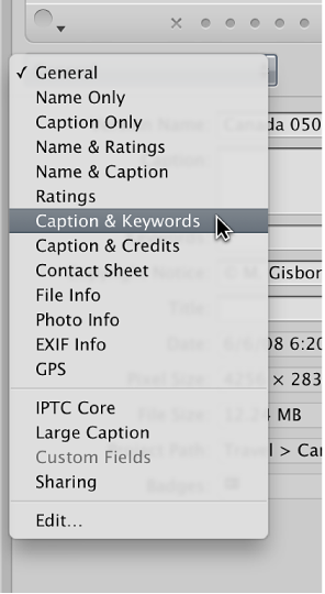 Figure. Options in the Metadata View pop-up menu in the Metadata inspector.