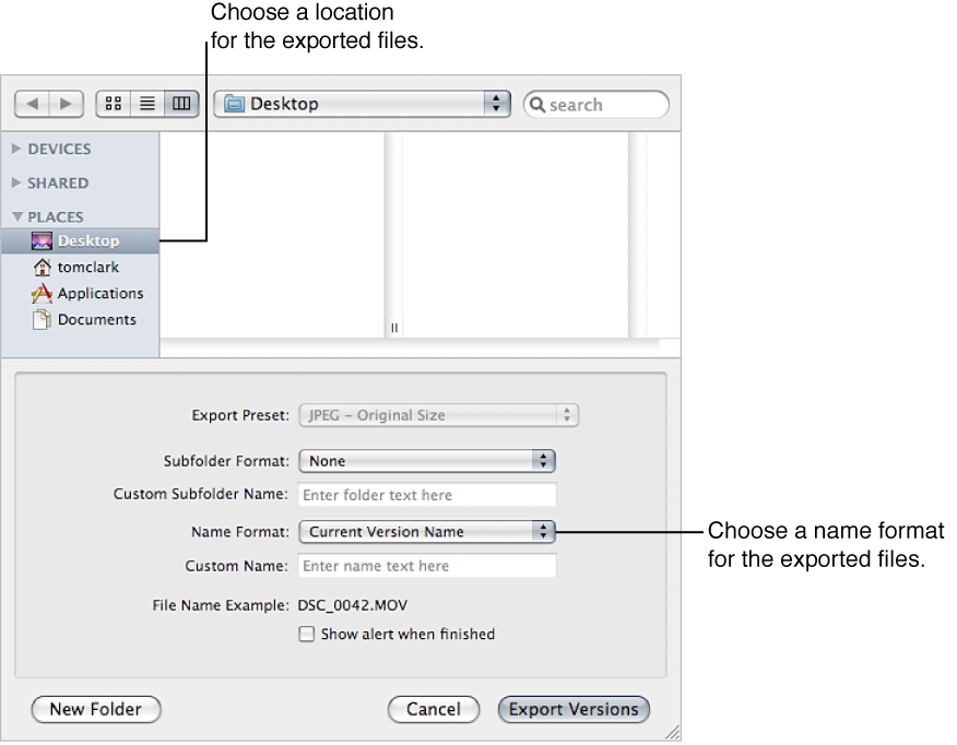 Figure. Controls in the Export dialog.