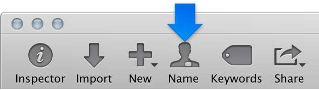 Figure. Name button in the toolbar.