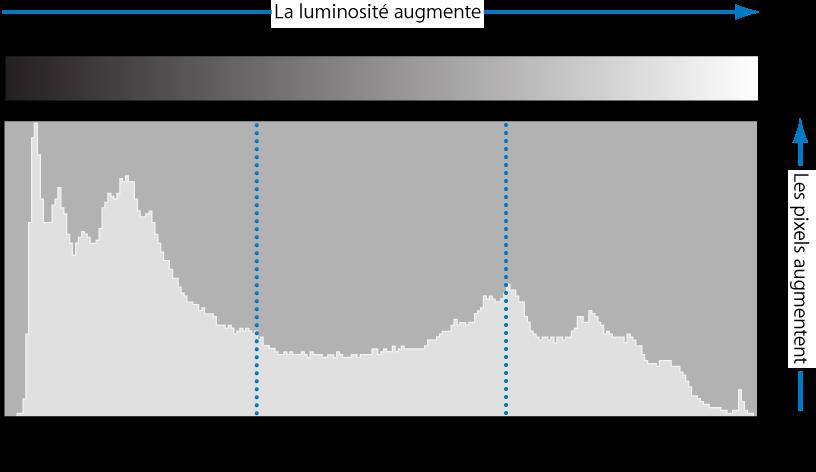 Figure. Histogramme représentant la luminosité d'un pixel selon sa position de ton.