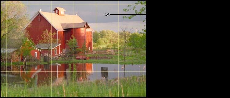 Figure. Image affichant une grille jaune apparaissant sur l'image pour vous aider à l'aligner parfaitement sur l'horizon.