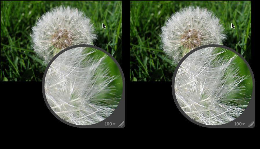 Figure. Image avant et après application d'un ajustement Renforcement de la netteté des contours.