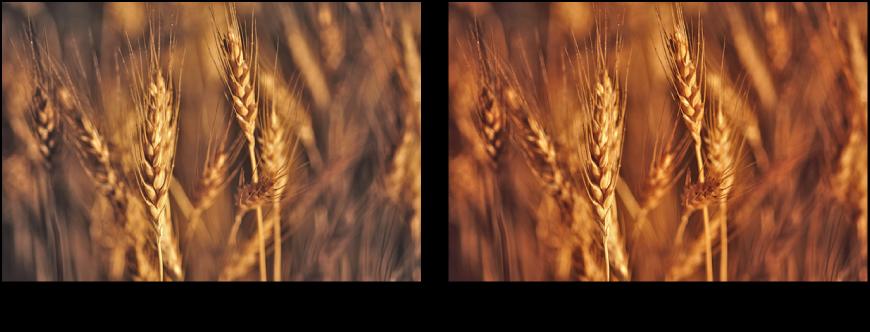 Illustration avant et après application de l'ajustement d'amélioration automatique