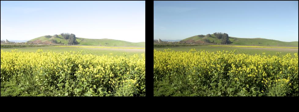 Figure. Image avant et après application d'un ajustement Courbes.