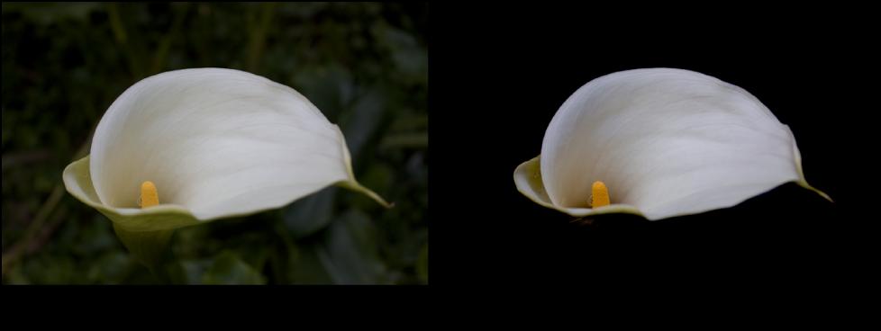 Figure. Image avant et après application d'un ajustement de courbes Point noir.