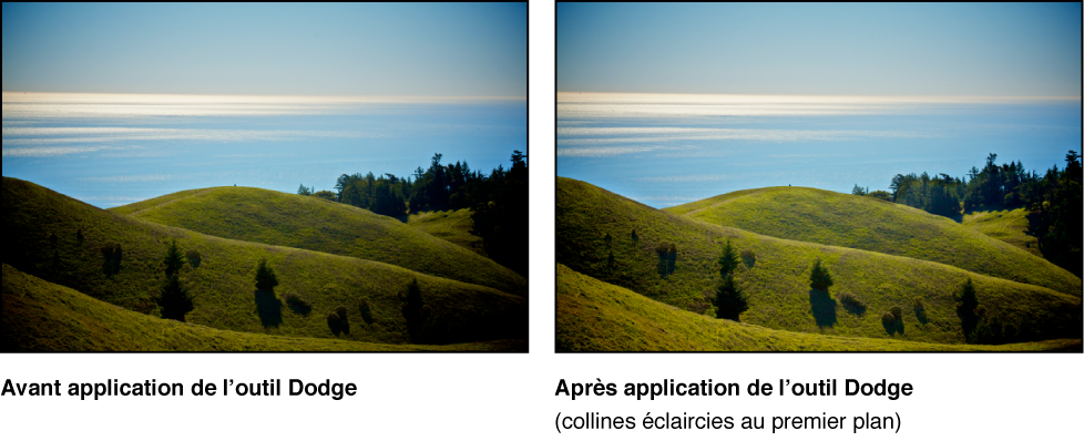 Figure. Image avant et après un ajustement Dodge de Pinceau rapide.