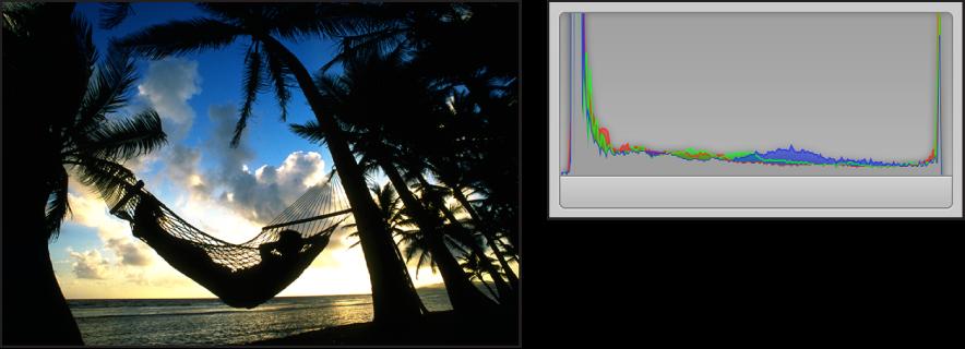 Figure. Comparaison côte à côte d'une image prise en silhouette et de son histogramme dont les pics sont concentrés sur les côtés et dont aucune activité est visible au centre.