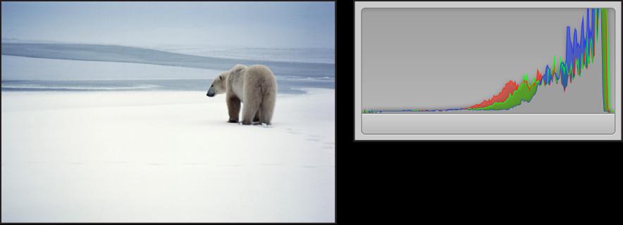 Figure. Comparaison côte à côte d'une image lumineuse et de son histogramme dont les pics sont concentrés sur le côté droit du graphique.