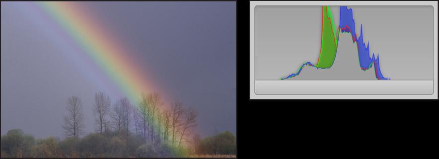 Figure. Comparaison côte à côte d'une image à bas contraste et de son histogramme dont les pics sont concentrés au centre et dont aucune activité est visible sur les côtés.
