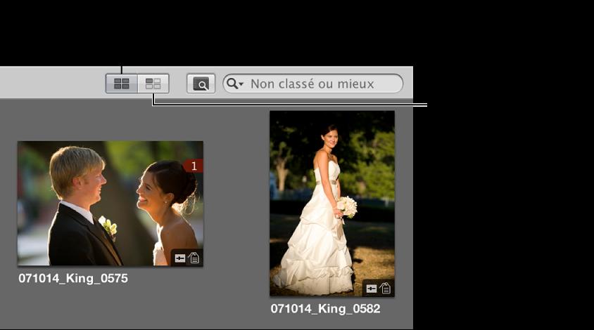 Figure. Boutons «Afficher toutes les images» et «Afficher les images non placées» dans le navigateur.