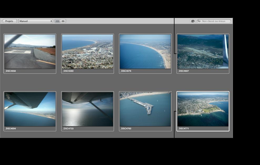 Figure. Navigateur affichant une sélection principale avec un cadre blanc épais et d'autres images sélectionnées avec un cadre blanc fin.