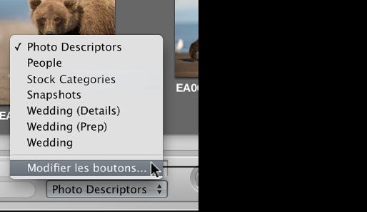 Figure. Menu local «Groupes de mots-clés prédéfinis» affichant la commande Modifier les boutons.