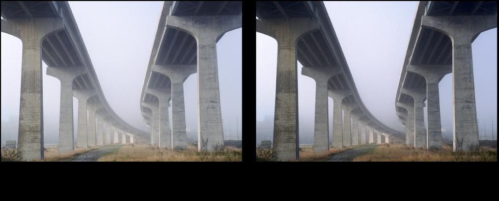 Figure. Image avant et après application d'un ajustement Niveaux autom. combinés.