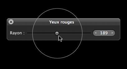Figure. Repère apparaissant sur le curseur Rayon situé dans la palette des yeux rouges pour indiquer la taille du repère Yeux rouges.