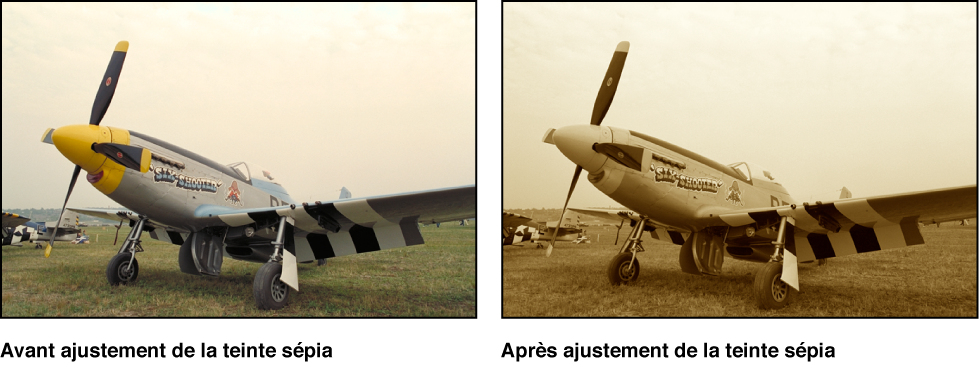 Figure. Image avant et après application d'un ajustement Ton sépia.