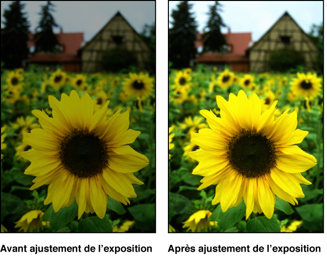 Figure. Image avant et après application d'un ajustement d'exposition.