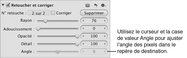 Figure. Commandes Angle disponibles dans la zone Repérer et corriger de l'inspecteur des ajustements.