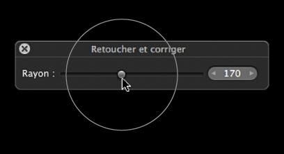 Figure. Repère apparaissant sur le curseur Rayon situé dans la palette de retouche et de correction pour indiquer la taille du repère Repérer et corriger.