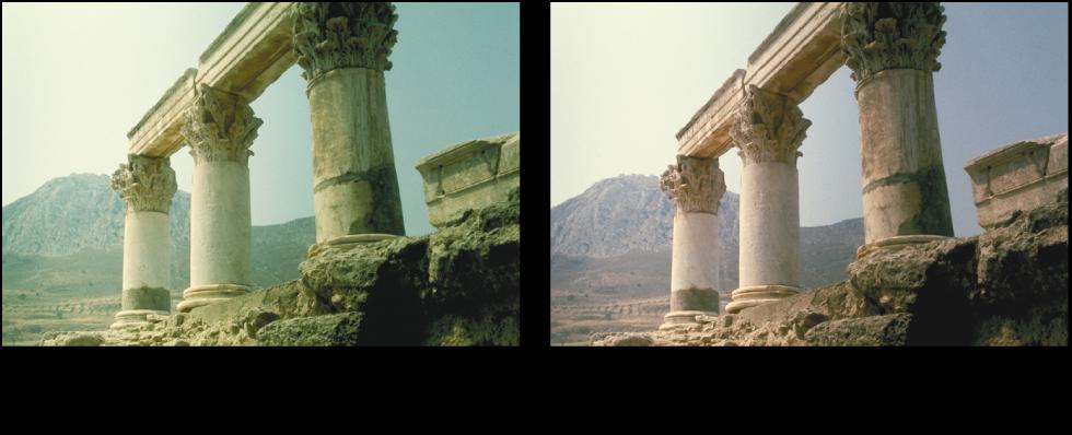 Figure. Image avant et après application d'un ajustement Niveaux de vert.