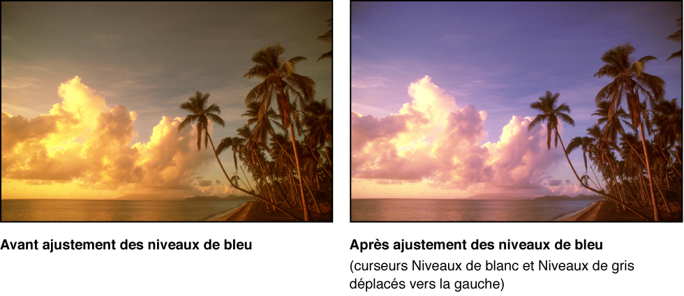 Figure. Image avant et après application d'un ajustement Niveaux de bleu.