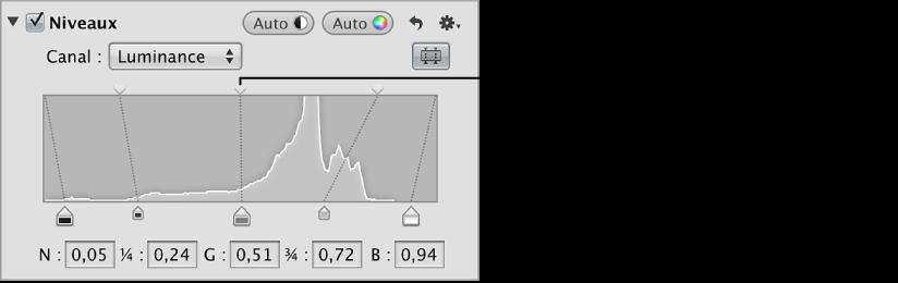 Figure. Curseur Niveaux de luminosité dans la partie supérieure de l'histogramme dans la zone Niveaux de l'inspecteur des ajustements.