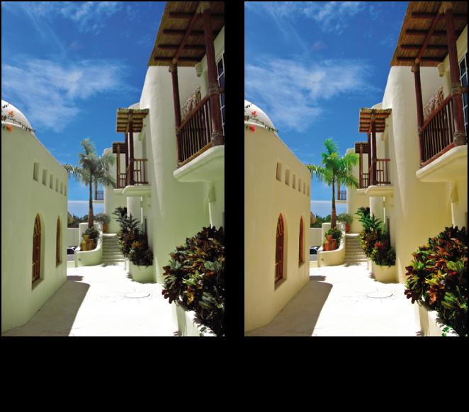 Figure. Image avant et après application d'un ajustement Couleur.