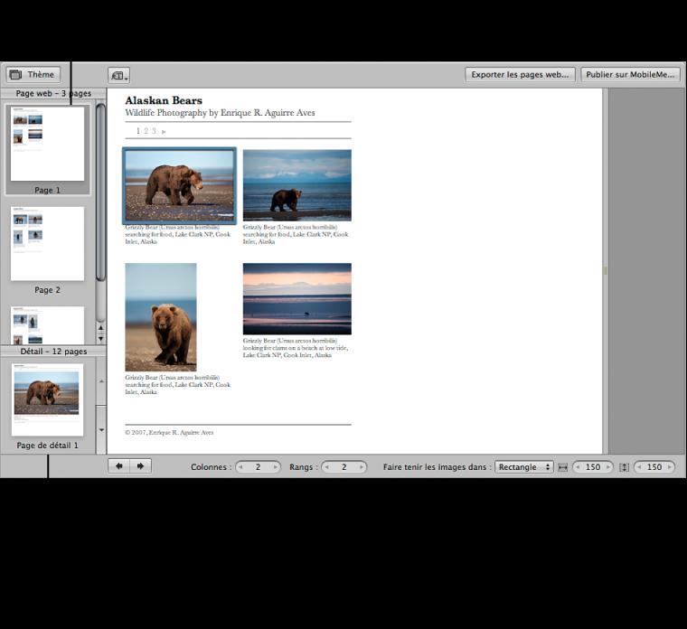 Figure. Commandes de galerie web dans l'éditeur de pages web.