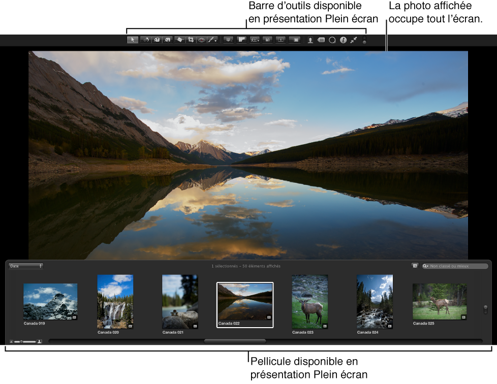 Figure. Présentation Plein écran affichant la barre d'outils, la pellicule et une présentation Plein écran de l'image sélectionnée.