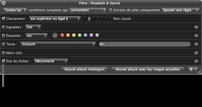 Figure. Palette de filtre affichant les options de recherche État du fichier.