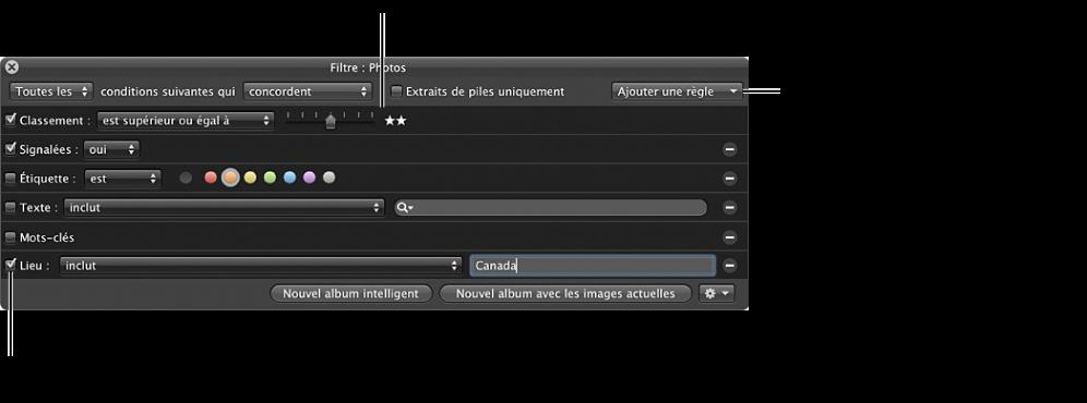 Figure. Palette de filtre du navigateur configuré pour une recherche utilisant une combinaison de critères de recherche.