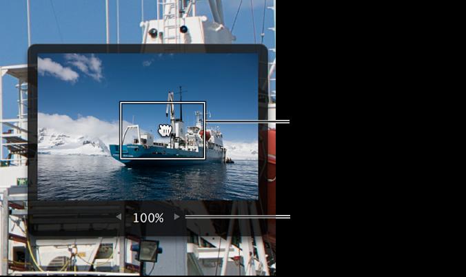 Figure. Détails d'une image montrant un cadre gris avec un rectangle rouge à l'intérieur, utilisé pour effectuer le panoramique de l'image et un curseur de valeur utilisé pour modifier le grossissement de l'image.