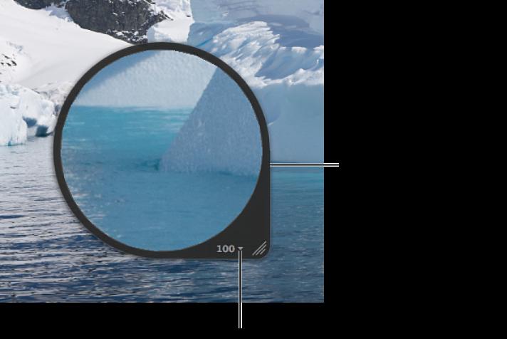Figure. Loupe centrée agrandissant une partie d'une image dans le visualiseur.