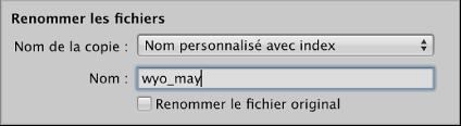 Figure. Commandes servant à renommer les fichiers dans le navigateur d'importation.